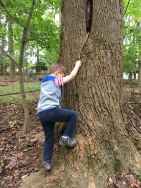 "Using a ""grappling hook"" to climb"