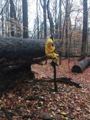 Sliding down the fireman pole