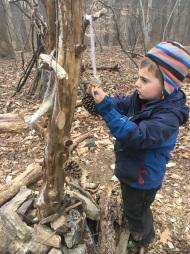 Treasure tree addition