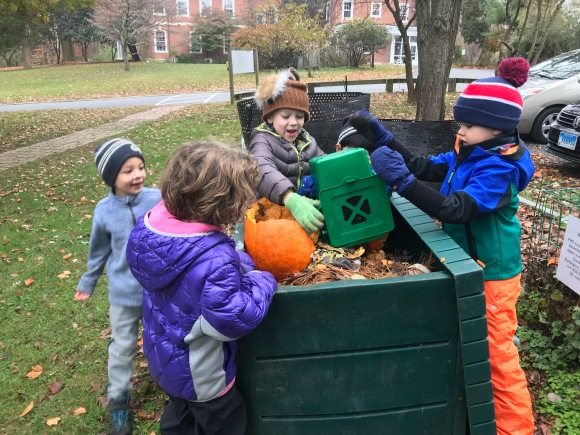 Composting the pumpkin