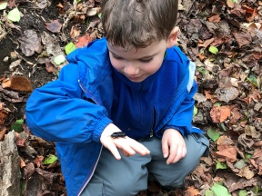 Boy and Bess Beetle