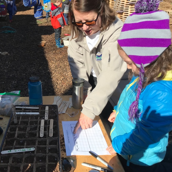 Mapping our seeds on a grid