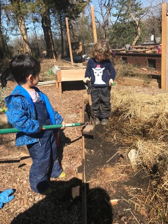 Preparing the garden bed