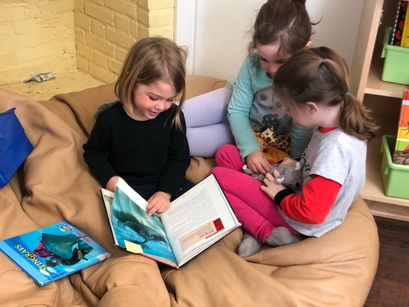 Reading to friends (including koala and giraffe) about sting rays