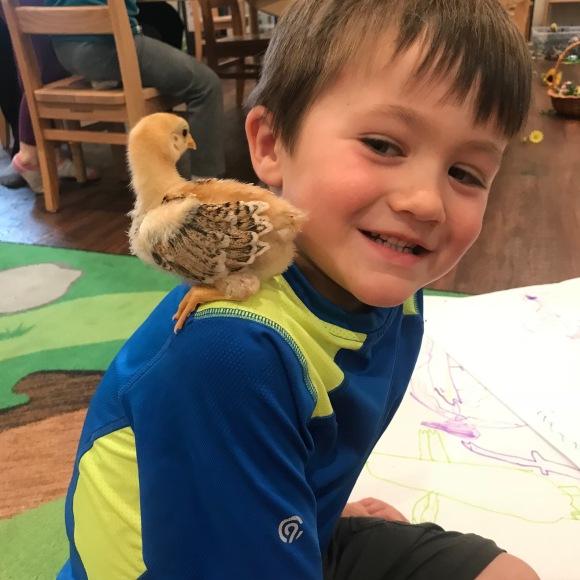 Bird boy connection