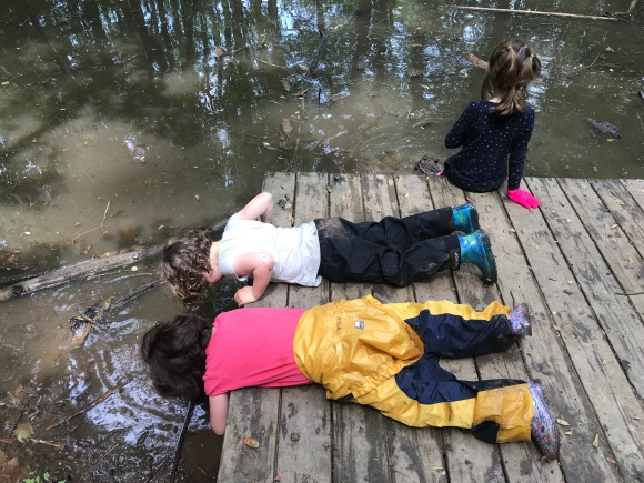 Pond meditation